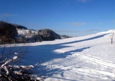 Winterimpressionen aus dem Jahre 2010: Blick über Zieglers Matte.