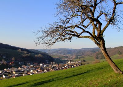 Dörlinbach im März 2021: Blick von oberhalb der Hub aufs Dorf.