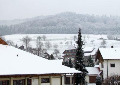 Winterimpressionen im Februar 2021: Blick zum Wanglerhof.