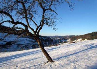 Winterimpressionen im Februar 2021: Blick ins Dorf von oberhalb der Hub.