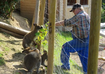 Känguru-Splitter 2019: Johannes Ohnemus (von allen nur Johann gerufen) war all die Jahre der treuste Begleiter der Kängurus im Pit-Pat-Tiergehege.