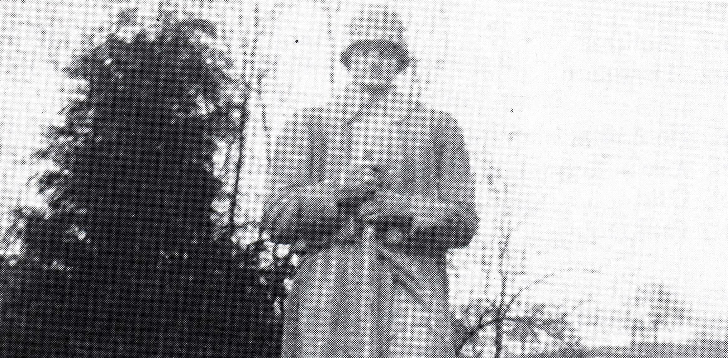 Das Krieger-Ehrenmal zum ehrenden Gedenken an die vermissten und gefallenen Soldaten des Ersten Weltkriegs in der Dorfmitte